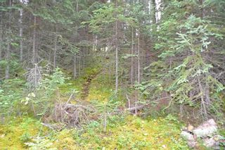 "Photo 28: LOT 1 HISLOP Road in Smithers: Smithers - Rural Land for sale in ""Hislop Road Area"" (Smithers And Area (Zone 54))  : MLS®# R2491414"