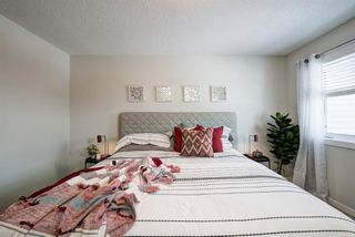 Photo 20: 125 Chinook Gate Boulevard SW: Airdrie Row/Townhouse for sale : MLS®# A1047739