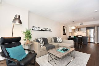 """Photo 11: 206 1618 QUEBEC Street in Vancouver: Mount Pleasant VE Condo for sale in """"CENTRAL"""" (Vancouver East)  : MLS®# R2262451"""
