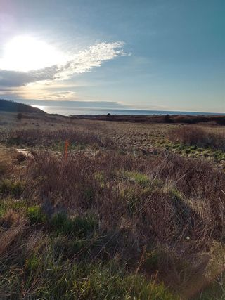 Photo 13: Lot 1 Old Cabot Trail Road in Point Cross: 306-Inverness County / Inverness & Area Vacant Land for sale (Highland Region)  : MLS®# 202111357