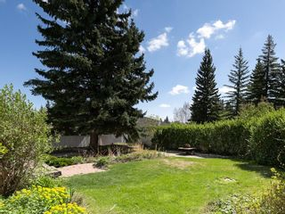 Photo 36: 2203 PALISWOOD Bay SW in Calgary: Palliser House for sale : MLS®# C4186167