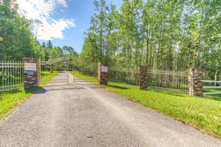 Photo 2: 162074 376 Street W: Rural Foothills County Detached for sale : MLS®# A1123842