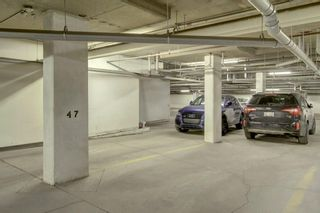 Photo 28: #409 1321 KENSINGTON CL NW in Calgary: Hillhurst Condo for sale : MLS®# C4199314
