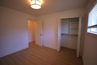 Photo 9: 20938 50 Avenue in Langley: Langley City House for sale : MLS®# R2594755