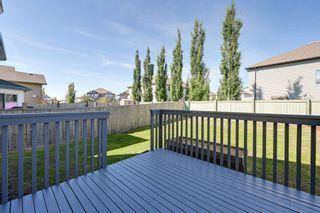Photo 49: 9266 212 Street in Edmonton: Zone 58 House for sale : MLS®# E4249950