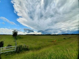 Photo 5: 343077 Range Road 45: Rural Clearwater County Detached for sale : MLS®# A1011991