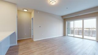 Photo 5: PH11 399 Stan Bailie Drive in Winnipeg: South Pointe Rental for rent (1R)  : MLS®# 202121858