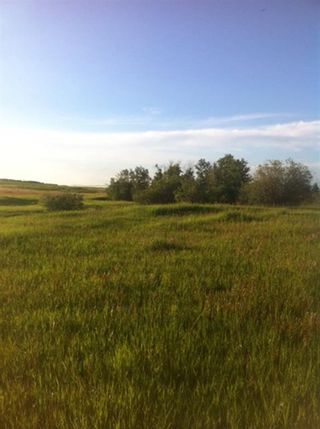 Photo 40: 282247 Range Road 12 in Rural Rocky View County: Rural Rocky View MD Detached for sale : MLS®# A1063413