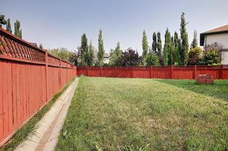 Photo 11: 78 Coventry Crescent NE in Calgary: Coventry Hills Detached for sale : MLS®# A1132919