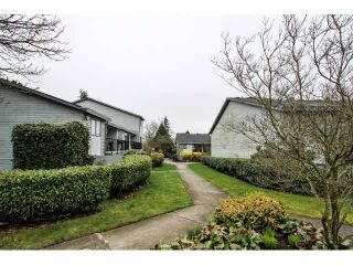 """Photo 1: 12 7549 HUMPHRIES Court in Burnaby: Edmonds BE Townhouse for sale in """"SOUTHWOOD COURT"""" (Burnaby East)  : MLS®# V1108085"""
