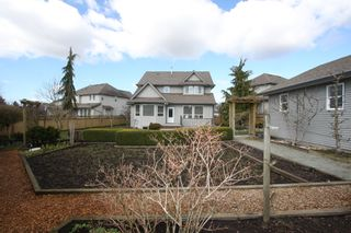Photo 43: 27982 Buffer Crescent in Abbotsford: House for sale