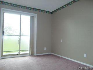 Photo 5: 406 2527 Quadra St in VICTORIA: Vi Hillside Condo for sale (Victoria)  : MLS®# 568823