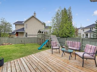 Photo 43: 15 Royal Elm Bay NW in Calgary: Royal Oak Detached for sale : MLS®# A1068818