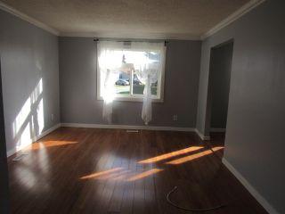 Photo 8: 17436 96 Street in Edmonton: House for rent
