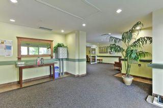 Photo 17: 113 78 MCKENNEY Avenue: St. Albert Condo for sale : MLS®# E4251124