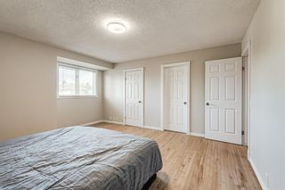 Photo 22: 416 McKerrell Place SE in Calgary: McKenzie Lake Detached for sale : MLS®# A1112888