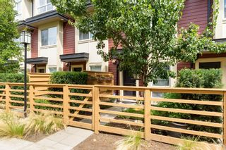 """Photo 45: 25 19477 72A Avenue in Surrey: Clayton Townhouse for sale in """"Sun at 72"""" (Cloverdale)  : MLS®# R2094312"""