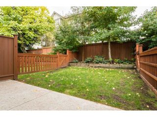"""Photo 20: 8 2929 156 Street in Surrey: Grandview Surrey Townhouse for sale in """"TOCCATA"""" (South Surrey White Rock)  : MLS®# R2214114"""