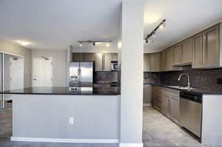 Photo 8: 302 429 14 Street NW in Calgary: Hillhurst Apartment for sale : MLS®# A1075167