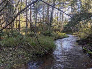 Photo 22: LT 189 Ellenor Rd in : CV Comox Peninsula Land for sale (Comox Valley)  : MLS®# 858998