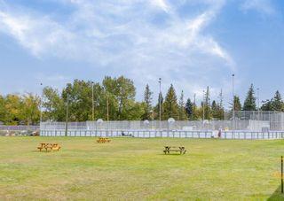 Photo 46: 944 Maplecroft Road SE in Calgary: Maple Ridge Detached for sale : MLS®# A1147511