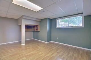 Photo 33: 16044 38 street NW in Edmonton: Zone 03 House for sale : MLS®# E4248402