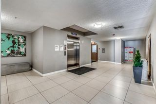 Photo 39: 502 735 2 Avenue SW in Calgary: Eau Claire Apartment for sale : MLS®# A1121371