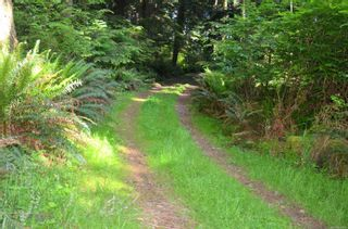 Photo 4: 7107 Deerlepe Rd in : Sk Whiffin Spit Land for sale (Sooke)  : MLS®# 850344