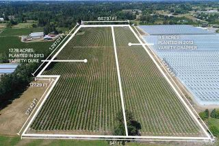 Photo 1: 27.28AC 4 Avenue in Langley: Land for sale : MLS®# R2362643