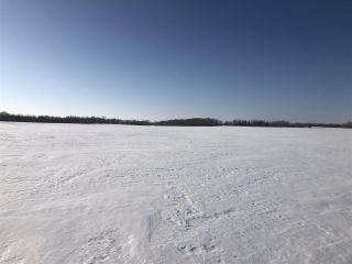 Photo 5: 254 TWP 610: Rural Westlock County Rural Land/Vacant Lot for sale : MLS®# E4191915