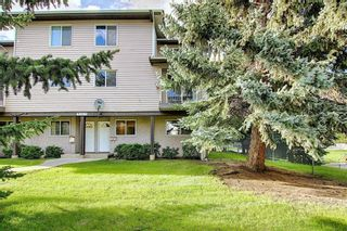 Photo 39: 1 3800 FONDA Way SE in Calgary: Forest Heights Row/Townhouse for sale : MLS®# C4300410