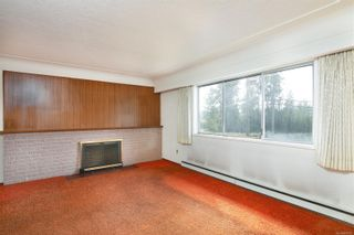 Photo 7: 4101 Carey Rd in : SW Marigold House for sale (Saanich West)  : MLS®# 857802