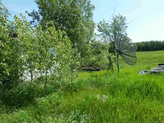 Photo 36: 57525 Rg Rd 214: Rural Sturgeon County Rural Land/Vacant Lot for sale : MLS®# E4237624