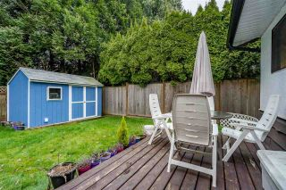 Photo 28: 20772 52 Avenue in Langley: Langley City House for sale : MLS®# R2582073
