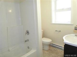 Photo 7: 610 Manchester Rd in VICTORIA: Vi Burnside Half Duplex for sale (Victoria)  : MLS®# 666380