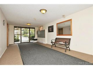 Photo 18: 202 3215 Alder St in VICTORIA: SE Quadra Condo for sale (Saanich East)  : MLS®# 728230