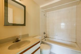 Photo 28: 3442 E 4TH Avenue in Vancouver: Renfrew VE House for sale (Vancouver East)  : MLS®# R2581450