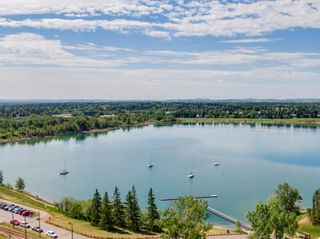 Photo 42: 1320 Craig Road SW in Calgary: Chinook Park Detached for sale : MLS®# A1139348