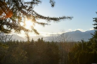 Photo 7: 4659 McQuillan Rd in : CV Courtenay East Land for sale (Comox Valley)  : MLS®# 863260