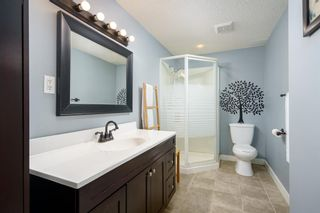 Photo 28: 6703 24 Avenue NE in Calgary: Pineridge Detached for sale : MLS®# A1124437