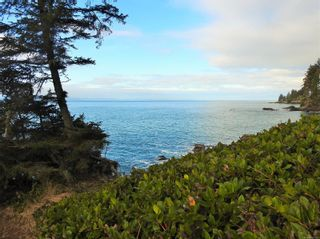 Photo 50: 2892 Fishboat Bay Rd in : Sk French Beach House for sale (Sooke)  : MLS®# 863163