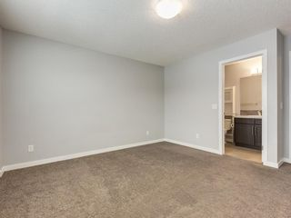 Photo 26: 107 Skyview Point Crescent NE in Calgary: Skyview Ranch Detached for sale : MLS®# A1048632