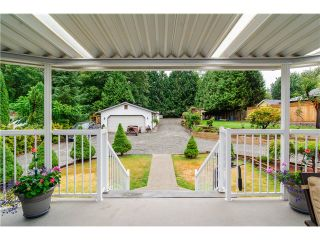 Photo 16: 29390 DUNCAN Avenue in Abbotsford: Aberdeen House for sale : MLS®# F1447279