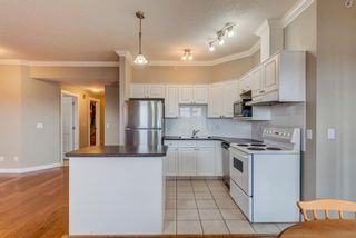 Photo 3: 304 1777 1 Street NE in Calgary: Tuxedo Park Apartment for sale : MLS®# A1103048
