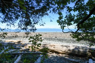 Photo 16: 2267 Seabank Rd in : CV Courtenay North Land for sale (Comox Valley)  : MLS®# 876071