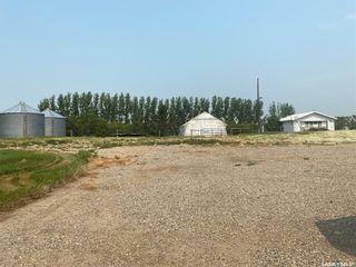 Photo 3: Risling Acreage in Tramping Lake: Residential for sale (Tramping Lake Rm No. 380)  : MLS®# SK864608