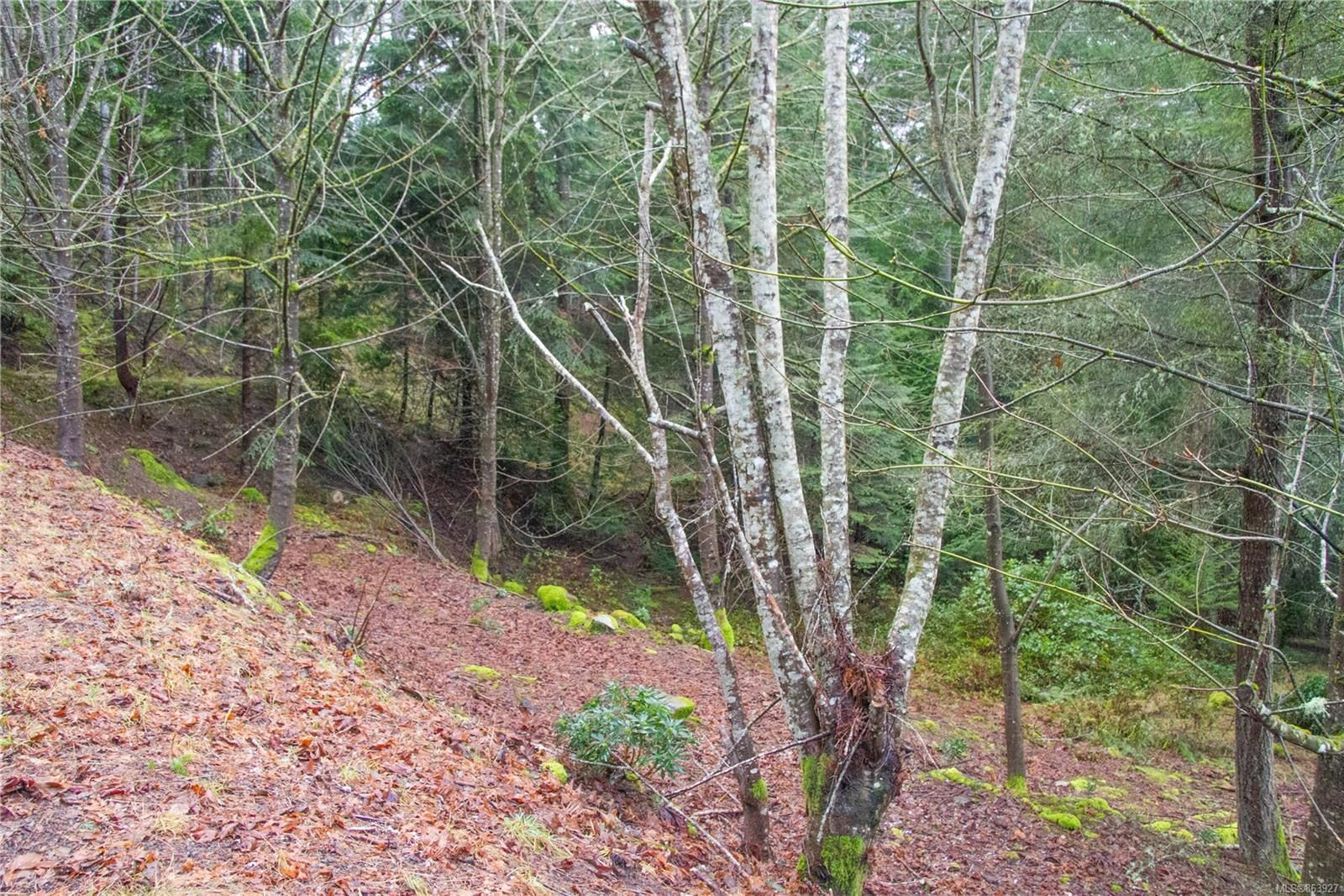 Main Photo: 2604 Yardarm Rd in : GI Pender Island Land for sale (Gulf Islands)  : MLS®# 863927