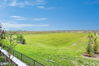 Photo 45: 111 Evanscrest Gardens NW in Calgary: Evanston Row/Townhouse for sale : MLS®# A1135885