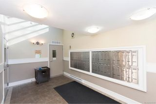 Photo 3: 104 2747 Quadra St in : Vi Hillside Condo for sale (Victoria)  : MLS®# 804216