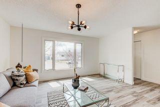 Photo 4: 216 Pinecrest Crescent NE in Calgary: Pineridge Detached for sale : MLS®# A1098959